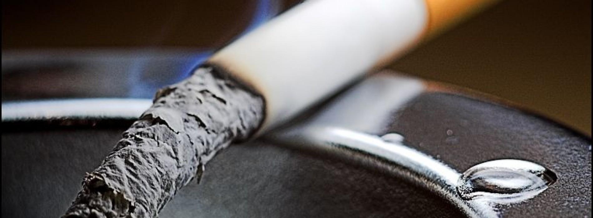 Jak wygląda firmowa palarnia?