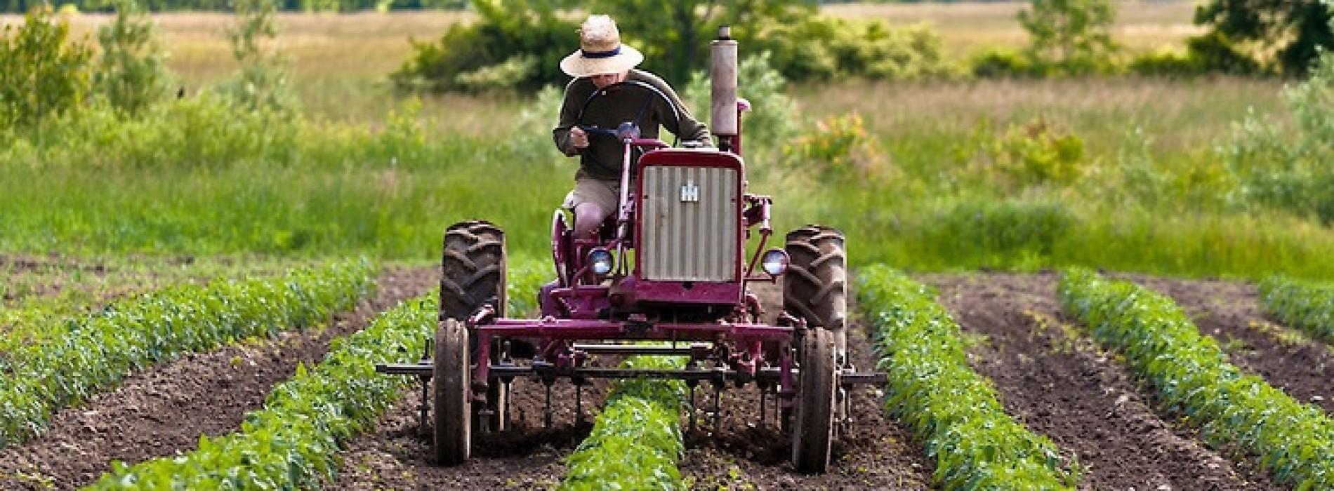 Resort rolnictwa wprowadza zmiany umożliwiające przekazanie pomocy większej liczbie gospodarstw